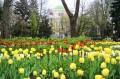 Весна 2010 года