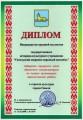Лучшая организация идеологической работы в отрасли культуры города Гомеля за 2008 год