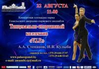 Концерт-презентация творчества танцевального спортивного клуба «V.I.P.», «Шоу Тайм» в Гомельском дворцово-парковом ансамбле