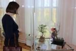 """Выставка карликовых деревьев Дмитрия Вихарева """"Сказки Сёгуна Токугавы в интерьере бонсай"""""""