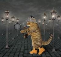 Animal quest «По следам животного мира!»